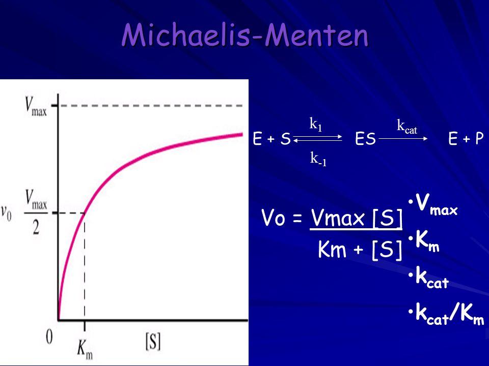 Michaelis-Menten Vmax Vo = Vmax [S] Km Vmax Km + [S] Km kcat Kcat